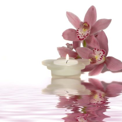 reflected orchid and candle