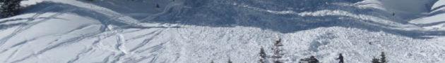 Avalanche-630x90